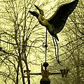Misty Egret - Gold by Photos By  Cassandra