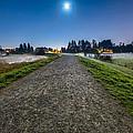 Misty Evening Walk by James Wheeler