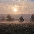 Misty Farm At Sunrise by Bill Cannon