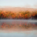 Misty Foilage by Anthony Sacco