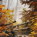 Misty Footbridge by Scott Norris