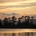 Misty Island Of Assawoman Bay by Bill Swartwout Photography