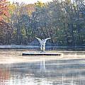 Misty Lake Angel by Bill Cannon