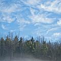 Misty Landscape by Alana Ranney