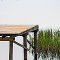Misty Morning By The Dock by Parker Cunningham