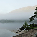 Misty Morning  by Gary Eason