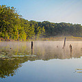 Misty Morning Lake by Harold Hopkins