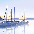 Misty Morning Sailboats by Bill Cannon