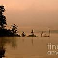 Misty Morning Solitude  by Neal Eslinger