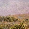 Misty Mountain by Paulette B Wright