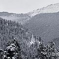 Misty Pikes Peak by Steve Krull