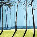Misty Pines by Michael Dillon