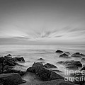 Misty Rocks Bw by Michael Ver Sprill