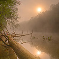 Misty Sun by Robert Charity