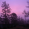 Misty Sunrise by Eric Johansen