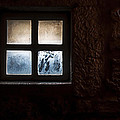 Misty Window by Enrico Della Pietra