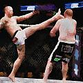 Mixed Martial Arts - A Kick To The Head by Elaine Plesser