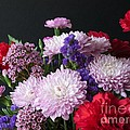 Mixed Posies by Ann Horn