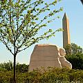 Mlk Memorial by David Call