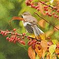 Mockingbird And Berries by Kerri Farley