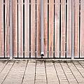 Modern Fence by Tom Gowanlock