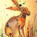 Modern hare by Juan  Bosco