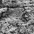Modern Hieroglyphics Viii by Karen Tagstrom