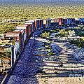 Mojave Desert Train By Diana Sainz by Diana Raquel Sainz