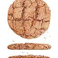 Molasses Cookie by Paula Pertile