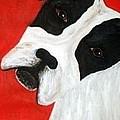 Molly Dog by Karen Harding