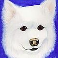 Molly The American Eskimo Dog by Lori Ziemba