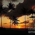 Moloki Sunset by Vivian Christopher