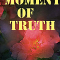 Moment Of Truth by Pamela Cooper