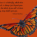 Monarch Butterfly Pismo Beach by Barbara Snyder