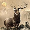 Monarch Of The Glen by Celestial Images
