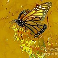 Monarch On Gold by Janette Boyd