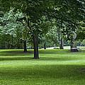 Monarch Park - 26 by Rick Shea