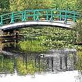 Monet Bridge by John Schneider