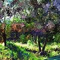Monet's Garden by Terence Morrissey