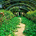 Monet's Gardens At Giverny by Jeff Black