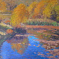 Monets Pond. Whitechapple by Terry Perham