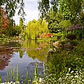 Monet's Water Garden 2 At Giverny by Alex Cassels