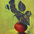 Money Plant - Still Life by Usha Shantharam