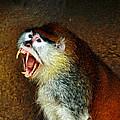 Monkey Fangs by Steve McKinzie
