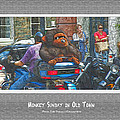 Monkey Sunday In Old Town by Joe Paradis