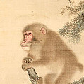 Monkeys by Mori Sosen