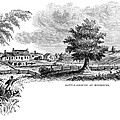 Monmouth Battlefield by Granger
