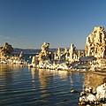 Mono Lake California by Alex Cassels
