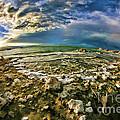 Mono Lake Tufa Peaceful View by Blake Richards