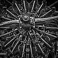 Mono Radial by Gareth Burge Photography